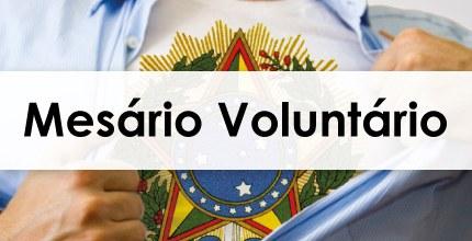 Mesário Voluntário 2020